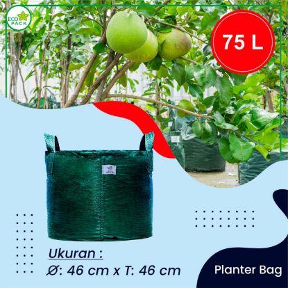 Gambar PLANTER BAG ECO PACK 75 LITER 2 HANDLES